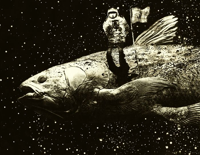 3. Coelacanth collage 27x35cm
